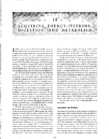 15 Acquiring Energy Feeding, Digestion And Metabolism