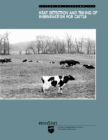 Heat Detection And Timing Of Insemination For Cattle