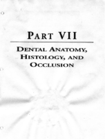 Kaplan Nbde I Dental Anatomy
