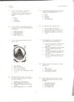 Asda Packet I I (Part 1)